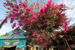 Bequia, St. Vincent. Grenadines. Karibik 20